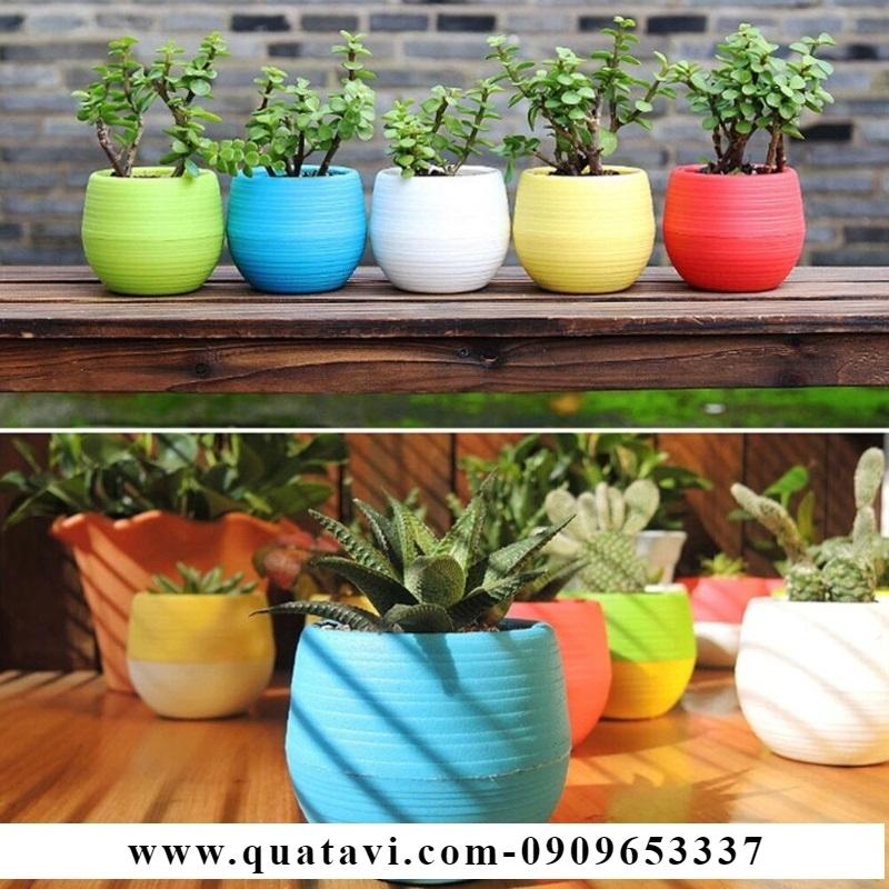 Pots, plant pot cover,ceramic plant pots, plant pot lids, large plant pots, wicker plant pots, plastic plant pots, plant pot roller, indoor plant pots.